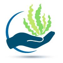 compromiso-ecologico-recoleccion-manual-sostenible