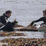 recoleccion sostenible algas algamar